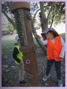 4.1a Children develop dispositions for learning such as curiosity, cooperation, confidence, creativity, commitment, enthusiasm, persistence, imagination and reflexivity. This is evident when children express wonder and interest in their environments.
