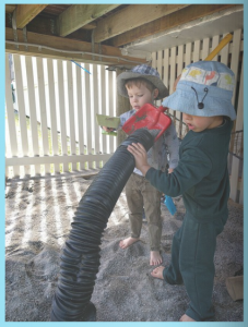 4.4b Children resource their own learning through connecting with people, place, technologies and natural and processed materials. This is evident when children use their senses to explore natural and built environments.